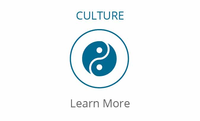 Culture Consulting - Learn More
