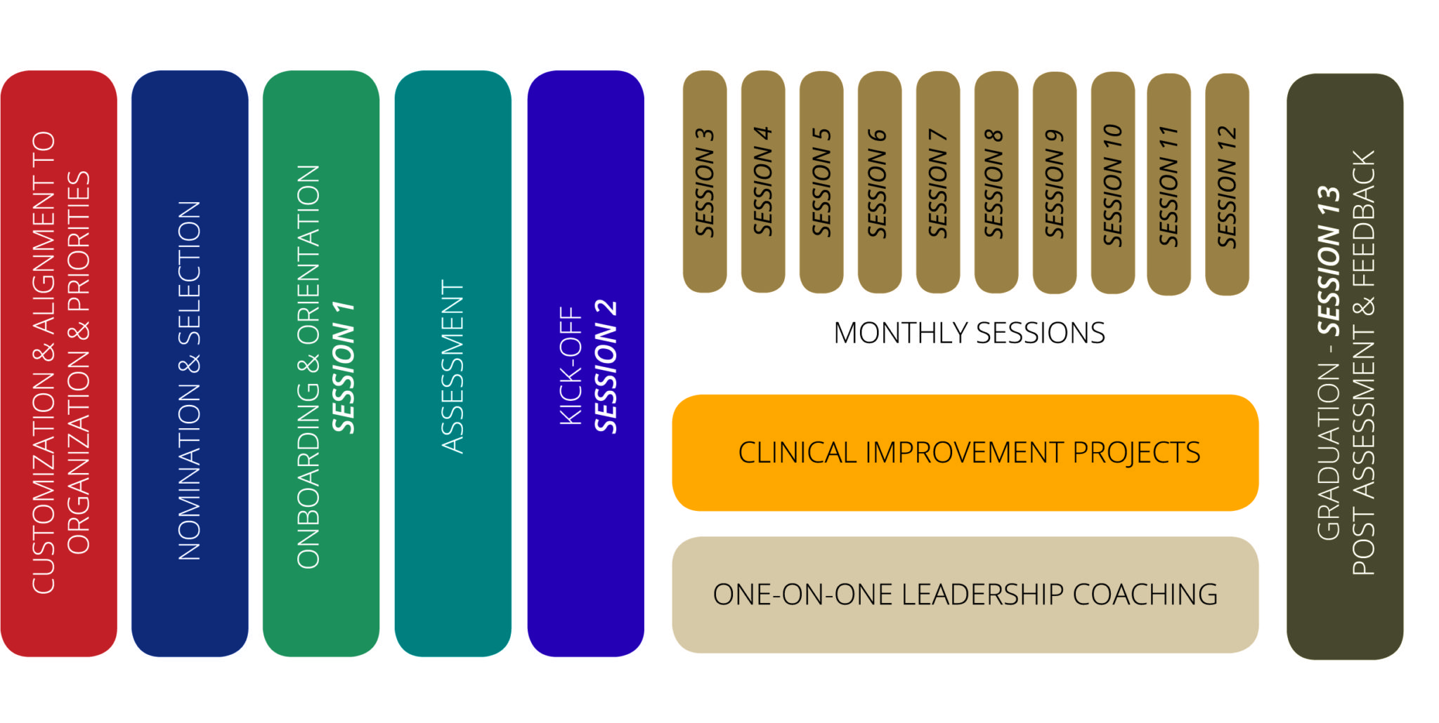 Physician Leadership Fellowship Example